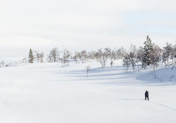 кататься на лыжах в одиночестве