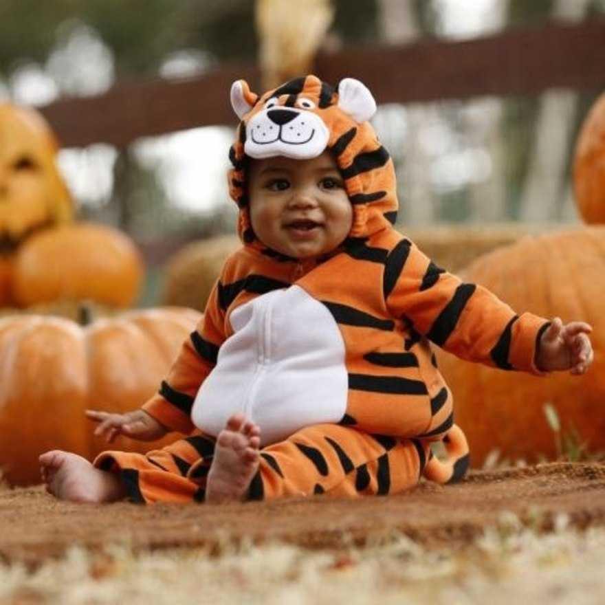 Малыш в костюме тигренка бегает и играет с родителями