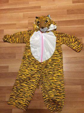 Животные Тигр напрокат   Аренда и прокат – Санкт-Петербург