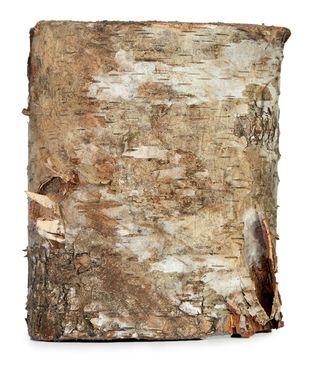 Подставки Спил «Дерево» напрокат | Аренда и прокат – Санкт-Петербург