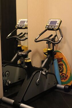 Велотренажеры Велоэргометр LeMond Fitness G-Force напрокат | Аренда и прокат – Москва