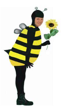 Животные Пчелка напрокат | Аренда и прокат – Москва